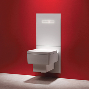 Туалетный терминал TECElux